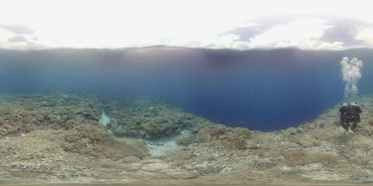 360 vr diver swims on a colorful coral reef VR 360° Video