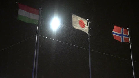 Hungarian Japanese and Norway Flags