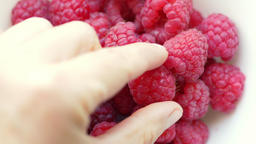 Raspberries. Hand is grabbing raspberry Live Action