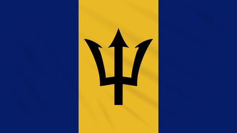 Barbados flag waving cloth background, loop Animation
