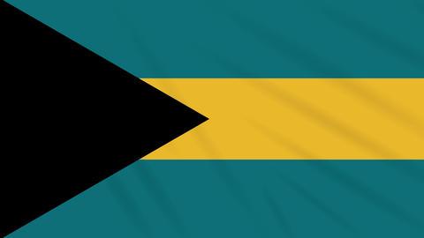 Bahamas flag waving cloth background, loop Animation