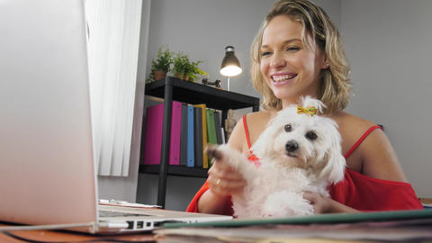 2-Business Woman Holding Dog During Skype Conference Call Footage