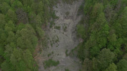 Aerial landfall impact on forested mountain slope, torrental rain aftermath Live Action