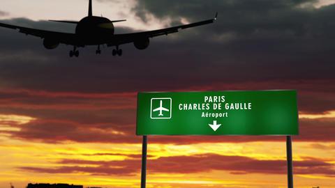 Plane landing in Paris Charles de Gaulle Animation