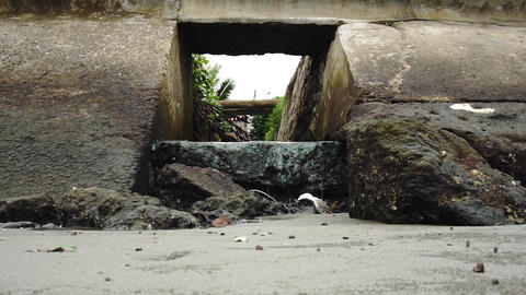 Sewerage near the shoreline with garbage Live Action
