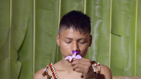 Studio Shot Of A Young Boy Smelling A Flower In Ecuador Live Action