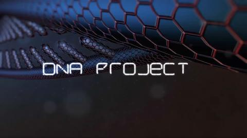 DNA Project After Effects Template
