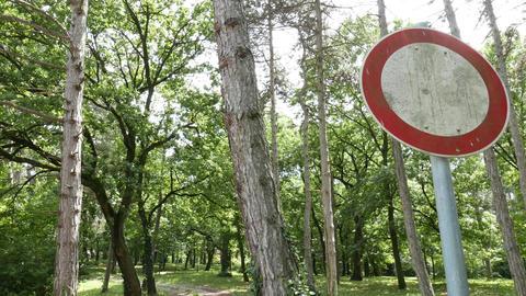 4K No Entry Sign in a Park 2 tilt Footage