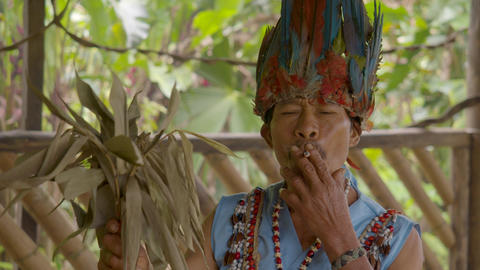 Indigenous Old Man Performs A Shamanic Ritual And Smokes Traditional Herbs In Ecuador Live Action