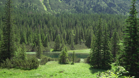 view of the valley of the mountain river in the Tatra mountains Live Action