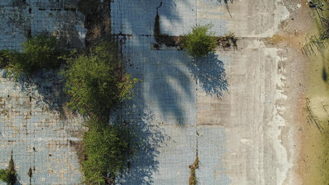 Swimming pool abandoned dirty trees glass weed tiles top down shot Live Action