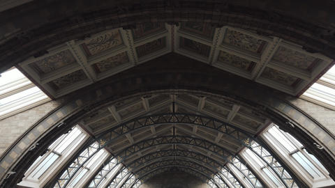 Roof of the main hall of the Natural History Museum of London, UK Live Action