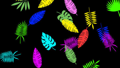 Tropical leaf minimal motion design animation Videos animados