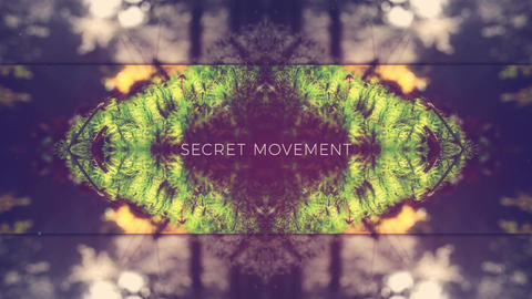 Secret Movement After Effects Template
