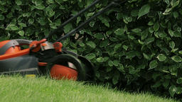 Lawn mower cutting the grass Footage