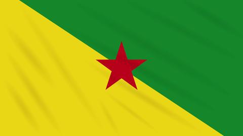 French Guiana flag waving cloth background, loop Animation