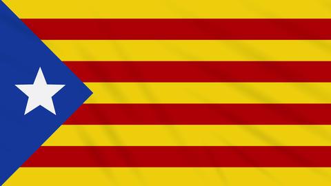 Blue estelada flag waving cloth background, loop Animation