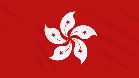 Hong Kong flag waving cloth background, loop Animation