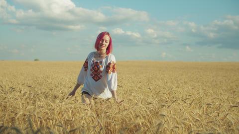 Elegant woman walking in wheat field at sunset Footage