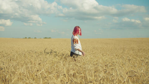 Graceful woman relaxing in wheat field at sunset Footage