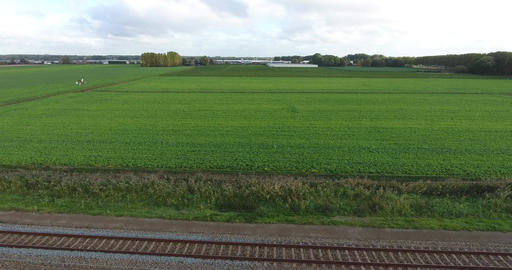 Agriculture Green Field aerial view, Netherlands Footage