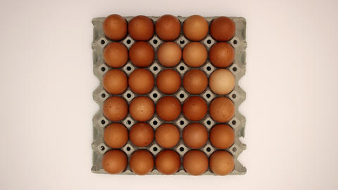30 Eggs in a box - Stop Motion Animation Animation