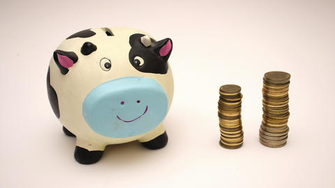 Coin and piggy bank - Stop Motion Video Animation