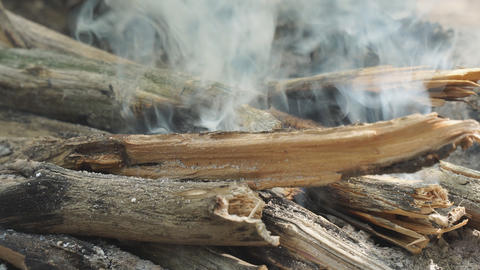 Firewood Smoking in campfire Live Action