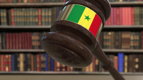 Flag of Senegal on falling judges gavel in court. National justice or Live Action