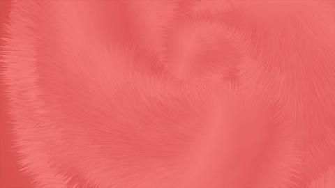Living coral abstract fluffy fur effect video animation Animation