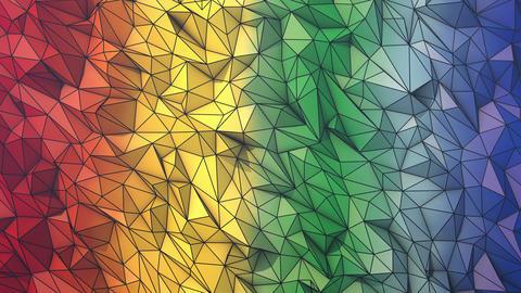 Rainbow short wireframe Animation