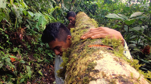 Two Indigenous Men Carrying A Log Through The Amazon Rainforest Footage
