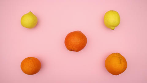 Oranges and lemons changing places - Stop motion animation video Animation