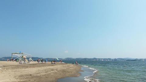 Summer beach on a sunny day ライブ動画