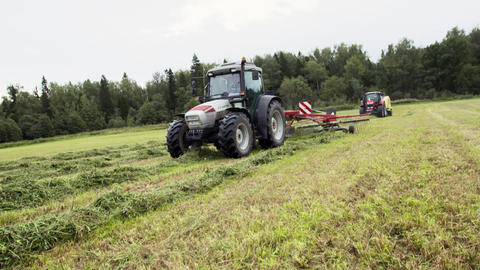 White tractor picks up cutted grass at farm field near forest Live Action