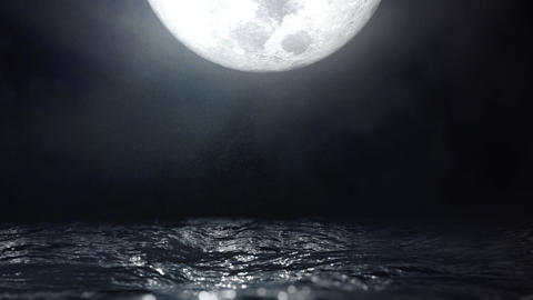Moonlight Reflection on Water Waves Seascape Loop Animation