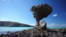Mushroom Beach Rock Stock Video Footage