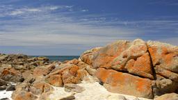 Bunker Bay Rocks Stock Video Footage