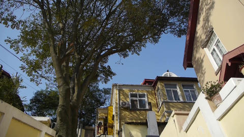 Panoramic of Tree with old house,blue sky & lush... Stock Video Footage