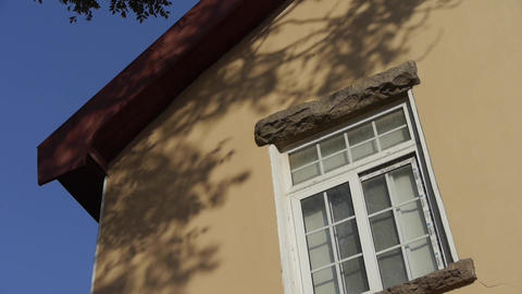 Mottled shadows of trees on window wall.Tree with old... Stock Video Footage