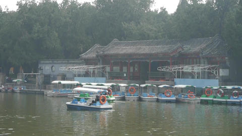 cruise ship docks,yacht boats on lake.willow relying on... Stock Video Footage