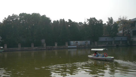Tourists cruise ships on water,Dense willows by sparkling... Stock Video Footage