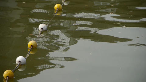 floats ball on lake.Water surface.sea ocean Footage