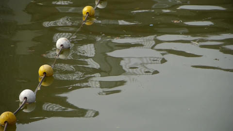 floats ball on lake.Water surface.sea ocean Stock Video Footage