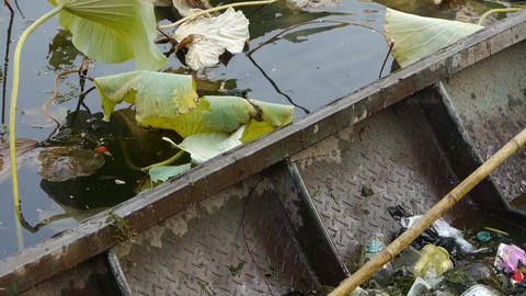 rubbish Garbage in Iron boat,Vast lotus pool,Fisherman... Stock Video Footage