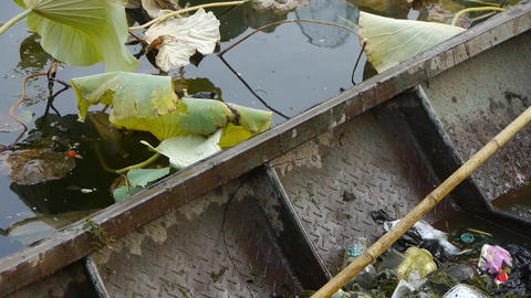 rubbish Garbage in Iron boat,Vast lotus pool,Fisherman clean lake in beijing Footage