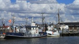 Fishing Port stock footage