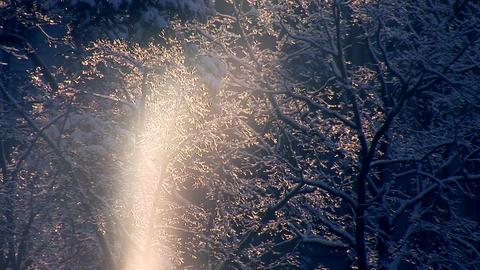 sun snow a Stock Video Footage