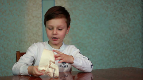 Boy plays with skull 1 Stock Video Footage