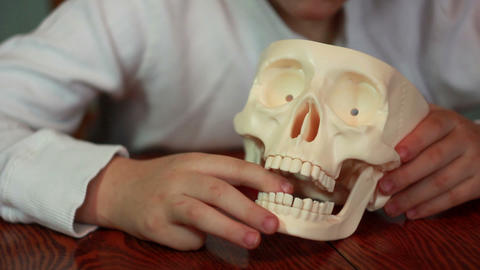 Boy plays with skull 2 Footage